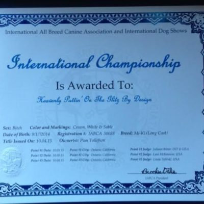 International Championship Certificate